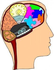 brain-(1)-ad875