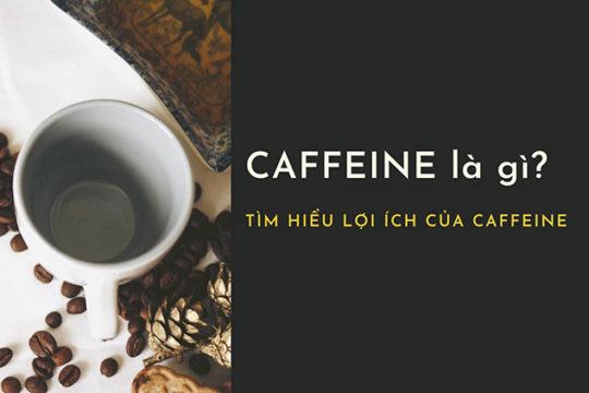 Caffeine là gì? Ngoài tỉnh táo, bạn biết gì về lợi ích của caffeine