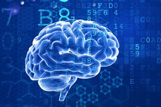 Bí mật về trí nhớ và phản trí nhớ