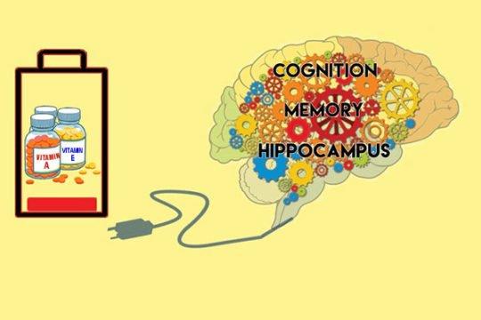 5 loại vitamin giúp tăng cường trí nhớ bạn nhất định phải biết